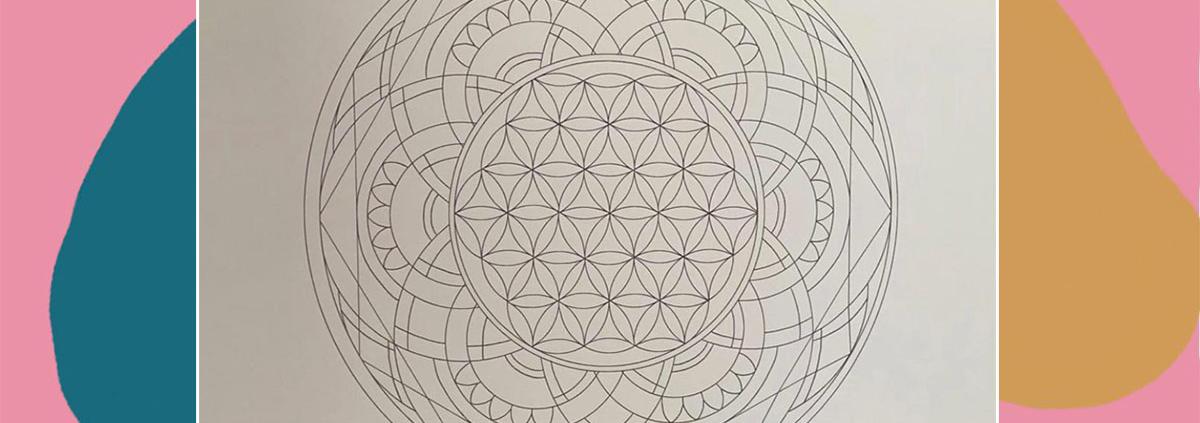 Mandala CSA